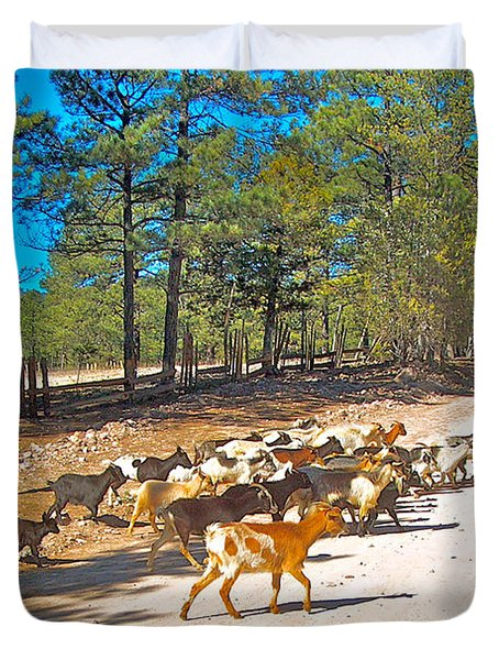 Goats Cross The Road With Tarahumara Boy As Goatherd-chihuahua Duvet Cover