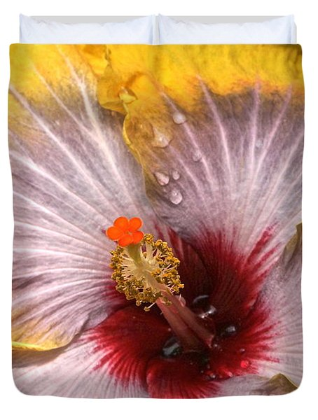 Gold And Silver And Ruby Hibiscus Close Up Duvet Cover by Byron Varvarigos