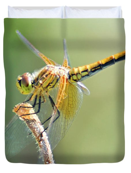 Gold Dragonfly Duvet Cover
