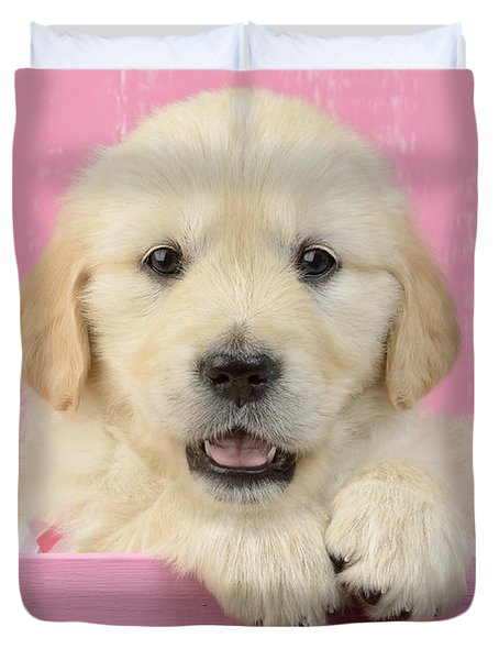 Gold Retriever Pink Background Duvet Cover by Greg Cuddiford