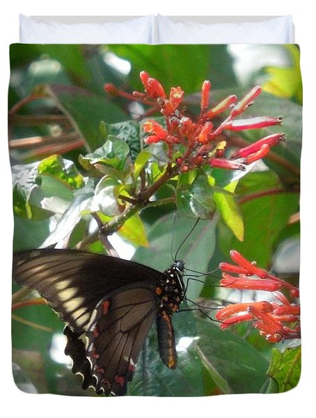 Duvet Cover featuring the photograph Gold Rim Swallowtail by Ron Davidson