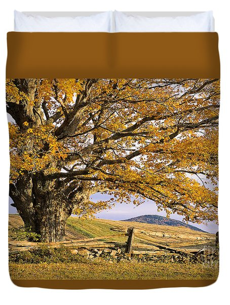 Golden Autumn Duvet Cover by Alan L Graham