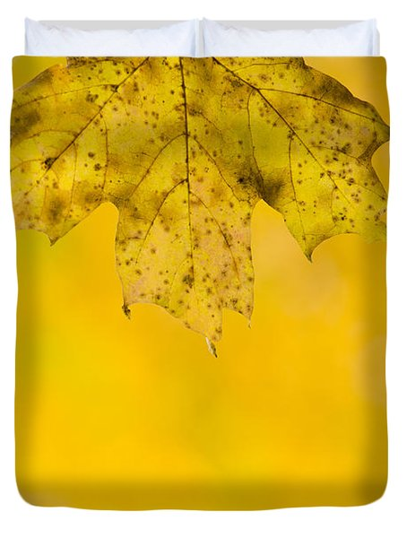 Duvet Cover featuring the photograph Golden Autumn by Sebastian Musial