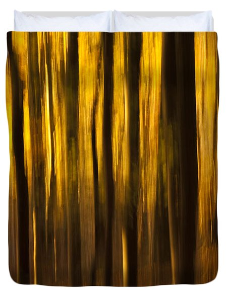Golden Blur Duvet Cover by Anne Gilbert