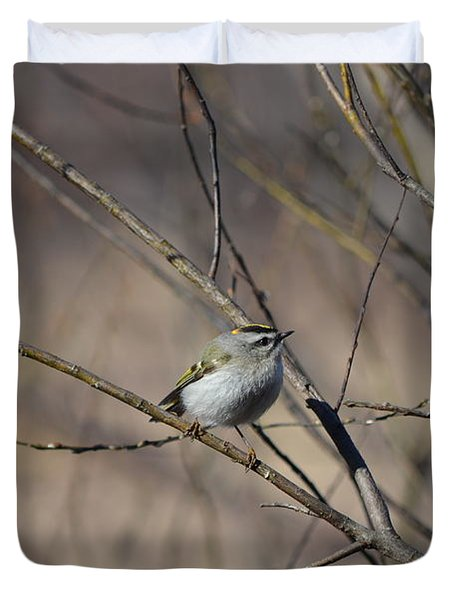 Duvet Cover featuring the photograph Golden-crowned Kinglet by James Petersen