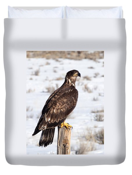 Golden Eagle On Fencepost Duvet Cover