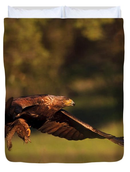 Golden Eagle On The Hunt Duvet Cover