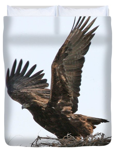 Duvet Cover featuring the photograph Golden Eagle Takes Off by Bill Gabbert