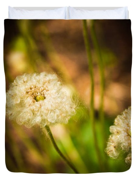 Duvet Cover featuring the photograph Golden Hour by Sara Frank