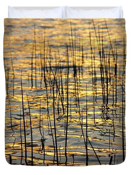 Golden Lake Ripples Duvet Cover by James BO  Insogna