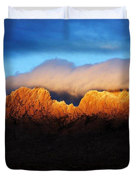 Golden Light Duvet Cover by Vivian Christopher