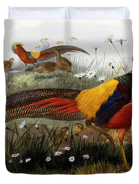 Golden Pheasants Duvet Cover by Joseph Wolf