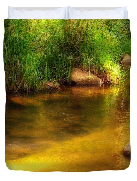 Golden Reflections Duvet Cover by Michelle Wrighton