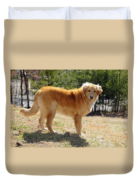 Duvet Cover featuring the photograph Golden Retriever by Kenny Francis
