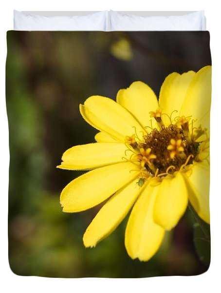 Golden Zinnia Duvet Cover by Photographic Arts And Design Studio