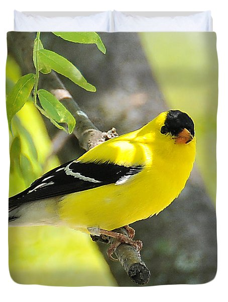Goldfinch 299 Duvet Cover