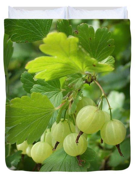 Gooseberries Duvet Cover