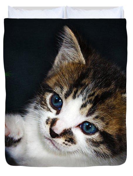 Gorgeous Christmas Kitten Duvet Cover