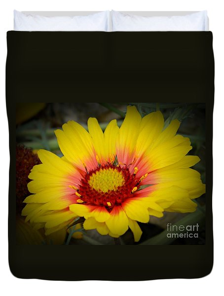 Gorgeous Daisy Duvet Cover by Chalet Roome-Rigdon