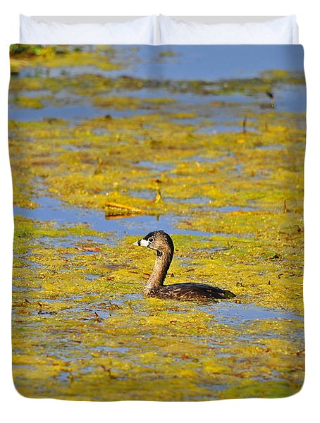 Gorgeous Grebe Duvet Cover by Al Powell Photography USA