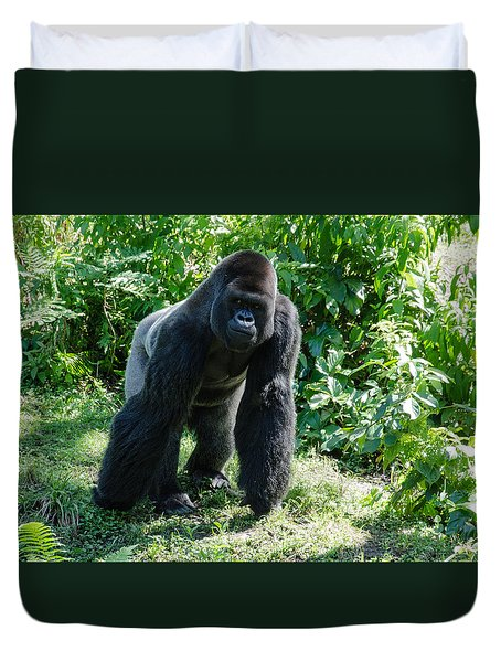 Gorilla In The Midst Duvet Cover