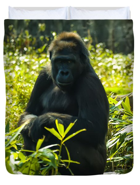 Gorilla Sitting On A Stump Duvet Cover by Chris Flees