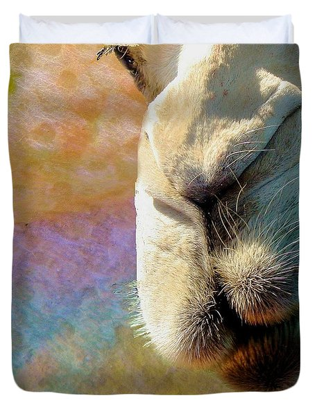 Duvet Cover featuring the photograph Got Some Food? by Janette Boyd