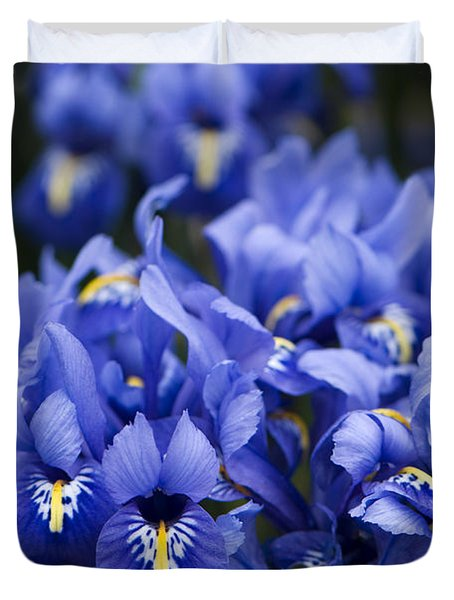 Got The Iris Blues Duvet Cover by Anne Gilbert