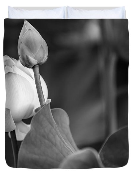Graceful Lotus. Balck And White. Pamplemousses Botanical Garden. Mauritius Duvet Cover by Jenny Rainbow