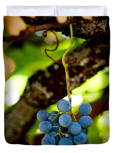 Grape Cluster Duvet Cover