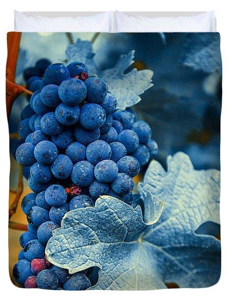 Grapes - Blue  Duvet Cover by Hannes Cmarits