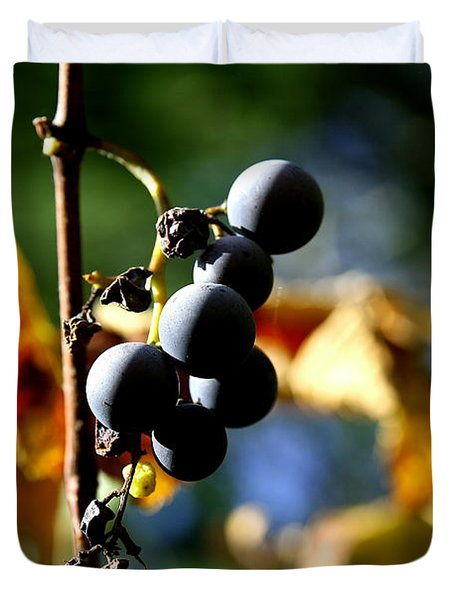Grapes On The Vine No.2 Duvet Cover by Neal Eslinger