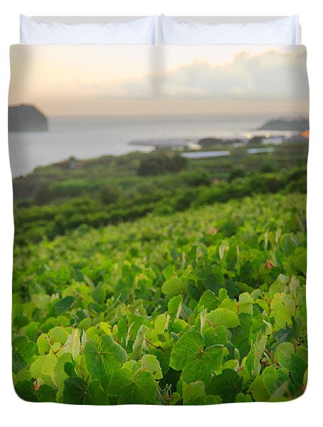 Grapevines And Islet Duvet Cover by Gaspar Avila
