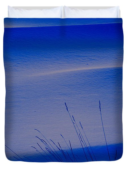 Grasses And Twilight Snow Drifts Duvet Cover by Irwin Barrett