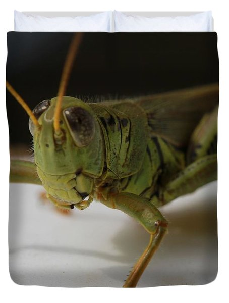 Grasshopper Duvet Cover by Dan Sproul