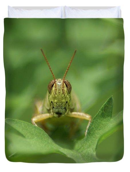 Duvet Cover featuring the photograph Grasshopper Portrait by Olga Hamilton