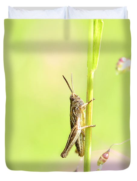 Grasshopper  Duvet Cover by Tommytechno Sweden