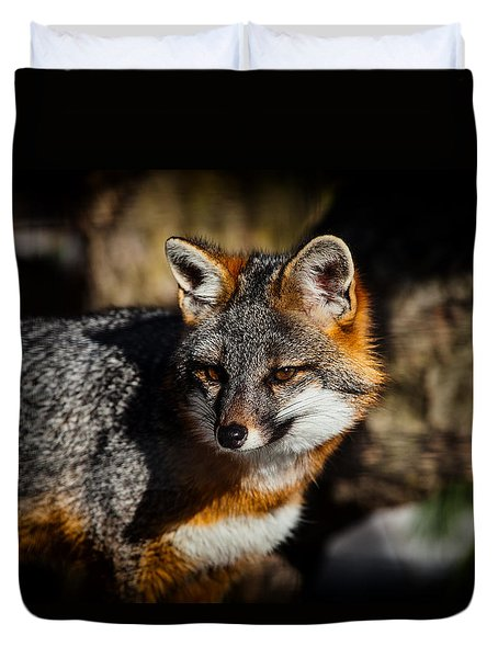 Gray Fox Duvet Cover