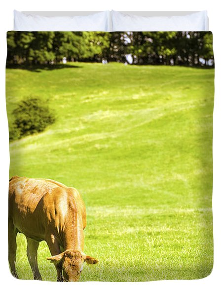 Grazing Cows Duvet Cover by Amanda Elwell