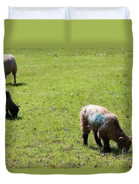 Grazing Duvet Cover by Vicki Spindler