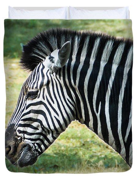 Grazing Zebra Duvet Cover