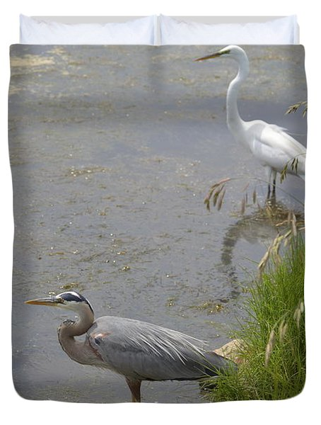 Duvet Cover featuring the photograph Great Blue And White Egrets by Judith Morris
