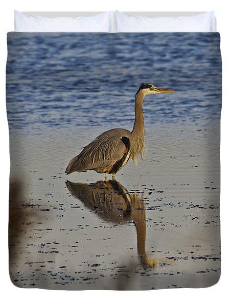 Great Blue Heron 1 Duvet Cover by SC Heffner