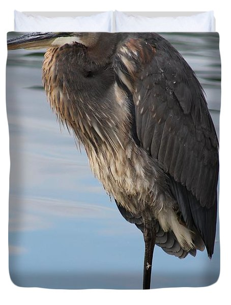 Great Blue Heron At Deep Water Lagoon Duvet Cover