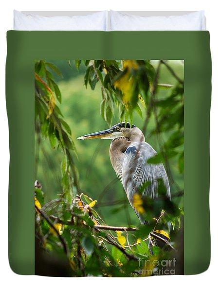 Great Blue Heron Duvet Cover by Eva Kaufman