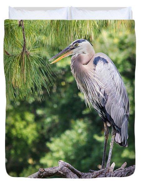 Great Blue Heron I Duvet Cover by Susan Molnar