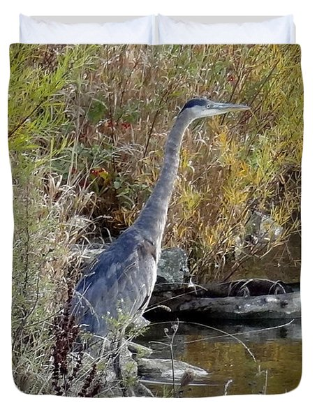 Great Blue Heron - Juvenile Duvet Cover