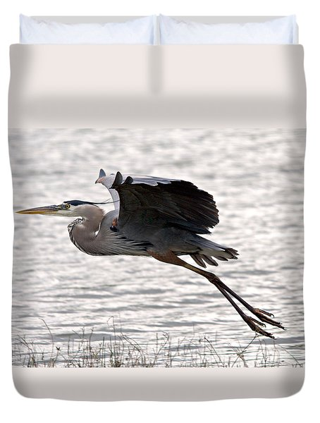 Great Blue Heron Landing Series 1 Duvet Cover