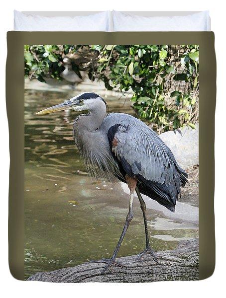 Great Blue Heron Duvet Cover by Shoal Hollingsworth