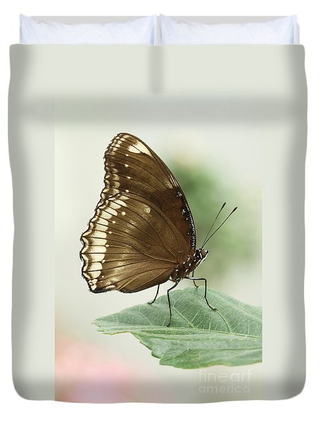 Great Eggfly Butterfly Duvet Cover by Judy Whitton